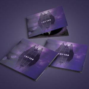 ALBUMS (LP / CD / K7)